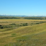 4 Glenbow Ranch Park, looking south